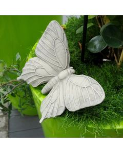 Schmetterling Mariposa, Resin, für Metallstab geei