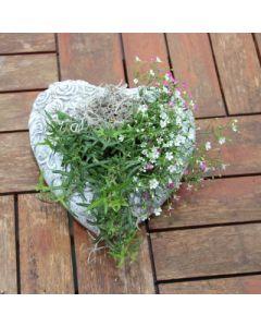 Gedenkherz mit Rosen zum bepflanzen, Zementguss