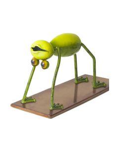 Yoga Frogs - Das Rad